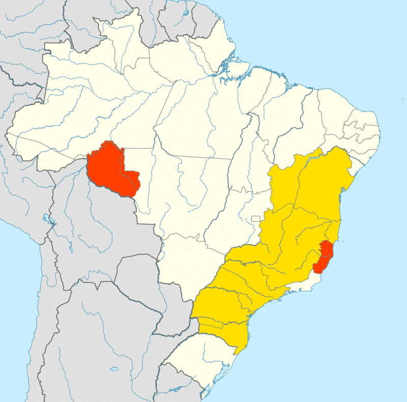 Brazil's coffee growing regions by type. Yellow is arabica, orange is robusta